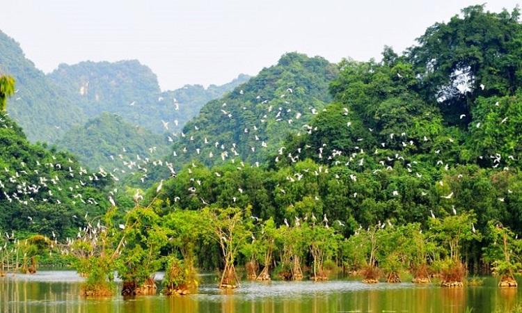 Du lịch Thung Nham Ninh Bình